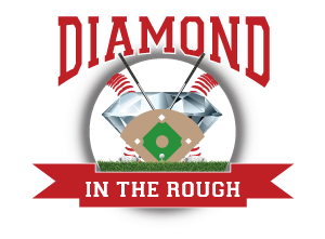 Diamond in the Rough Webster City logo